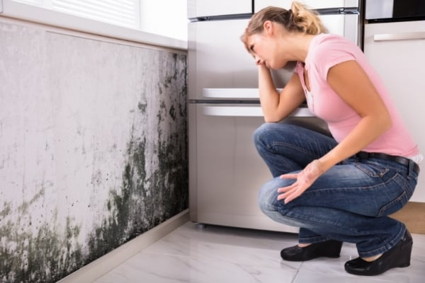 woman despairing over mold growth on wall